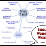 Google Wonder Wheel Tool